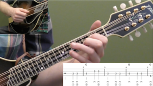 Wildwood Flower Beginner Mandolin Lesson